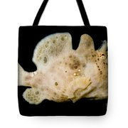 Warty Frogfish Tote Bag