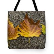 3 Wet Leaves Tote Bag