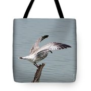 Wing Test Tote Bag