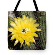 Yellow Cactus Flower Tote Bag