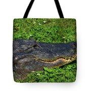 34- Flower Gator Tote Bag
