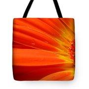 3437-002 Tote Bag