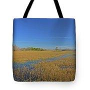 35- Grassy Waters Tote Bag