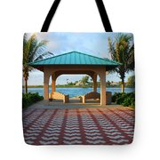 36- Palm Beach Inlet Tote Bag