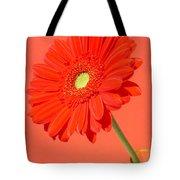 3990-001 Tote Bag