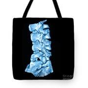 3d Ct Of Lumbar Spine Tote Bag