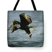 An American Bald Eagle In Flight Tote Bag