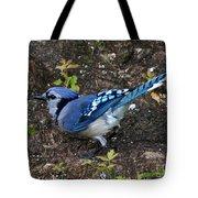 Blue-jay Tote Bag