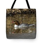 Common Merganser Tote Bag
