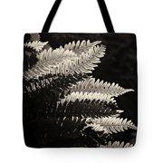 Common Polypody Tote Bag