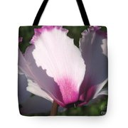 Cyclamen Named Victoria Tote Bag