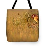 Digitally Enhanced Image With Painterly Tote Bag