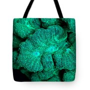 Fluorescent Coral In Uv Light Tote Bag
