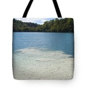 Freshwater Reef Tote Bag