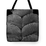 Gecko Foot Pads Tote Bag