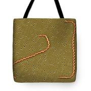 Leptospira Interrogans Tote Bag