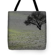 Lonely Tree Tote Bag