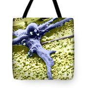 Malignant Cancer Cell Tote Bag