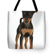 Miniature Pinscher Puppy Tote Bag