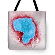 Respiratory Syncytial Virus Tote Bag
