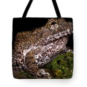 Rusty Robber Frog Tote Bag