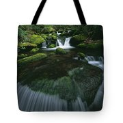 Tennessee, United States Of America Tote Bag