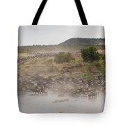 Wildebeest, Kenya, Africa Tote Bag