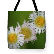 Wildflower Named Robin's Plantain Tote Bag