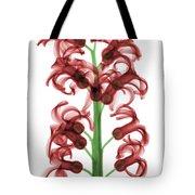 X-ray Of Hyacinth Tote Bag