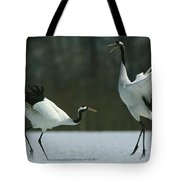 A Pair Of Japanese Or Red Crowned Tote Bag