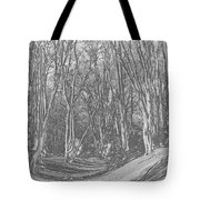 Ambresbury Banks  Tote Bag