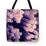 Aspergillus Tote Bag