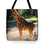 Baringo Giraffe  Tote Bag