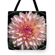 Dahlia Named Valley Porcupine Tote Bag