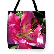 Dwarf Oriental Lily Named Farolito Tote Bag