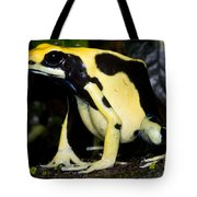 Dyeing Poison Frog Tote Bag