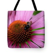Eastern Purple Coneflower Tote Bag