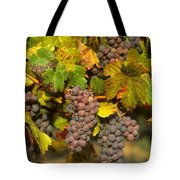 Grapes Growing On Vine Tote Bag