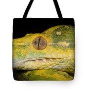 Green Tree Python Tote Bag