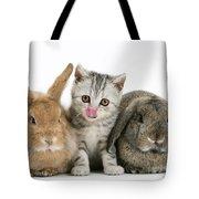 Kitten And Rabbits Tote Bag