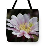 Pink Cactus Flower Tote Bag