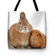 Rabbit And Guinea Pig Tote Bag