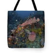 Reef Scene With Coral And Fish Tote Bag