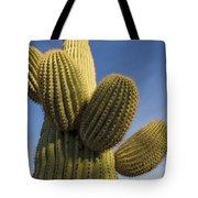 Saguaro Carnegiea Gigantea Cactus Tote Bag