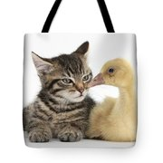 Tabby Kitten With Yellow Gosling Tote Bag