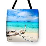 Tropical Beach Malcapuya Tote Bag