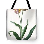 5 Tulip Tulip  Tote Bag