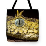 Usambara Eyelash Bush Viper Tote Bag
