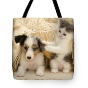 Kitten And Pup Tote Bag