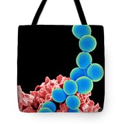 Methicillin-resistant Staphylococcus Tote Bag by Science Source